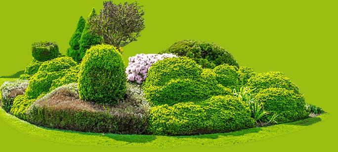 Garden Img